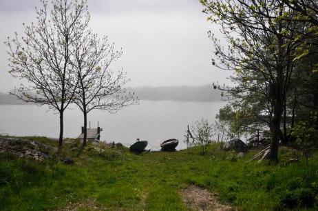 17-06-09 _ Sonne und Nebel 1