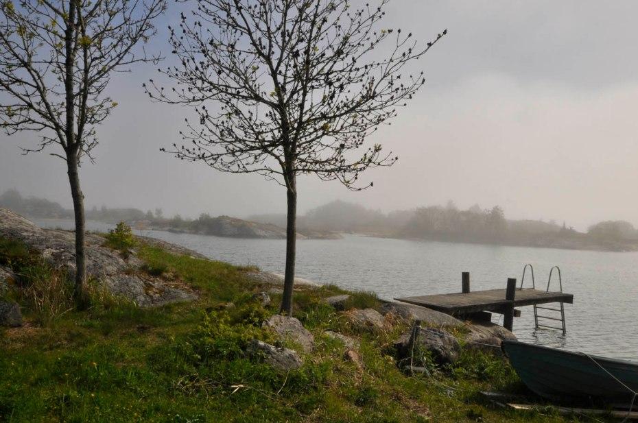 17-06-09 _ Sonne und Nebel 3